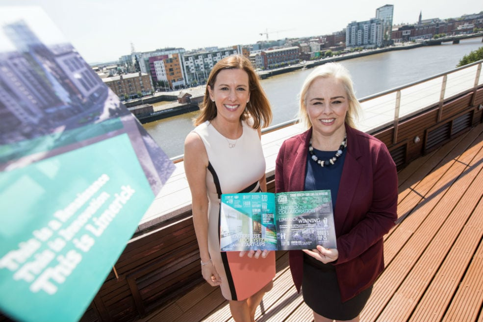new brochure boldly telling limerick s success story to win further